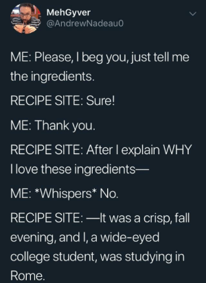 I don't need your life story: MehGyver  @AndrewNadeauC  ME: Please, I beg you, just tell me  the ingredients.  RECIPE SITE: Sure  ME: Thank you.  RECIPE SITE: After lI explain WHY  I love these ingredients-  ME: *Whispers* No.  RECIPE SITE: -lt was a crisp, fall  evening, and I, a wide-eyed  college student, was studying in  Rome. I don't need your life story