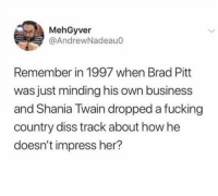 Brad Pitt, Diss, and Fucking: MehGyver  @AndrewNadeauo  Remember in 1997 when Brad Pitt  was just minding his own business  and Shania Twain dropped a fucking  country diss track about how he  doesn't impress her? no offense
