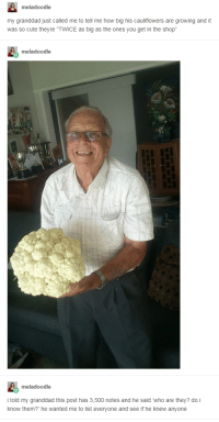 """<p>Like a Breath of Fresh Air</p>: meladoodle  my granddad just called me to tell me how big his cauliflowers are growing and it  was so cute theyre """"TWICE as big as the ones you get in the shop  meladoodle  meladoodle  i told my granddad this post has 3,500 notes and he said who are they? do i  know them? he wanted me to list everyone and see if he knew anyone <p>Like a Breath of Fresh Air</p>"""
