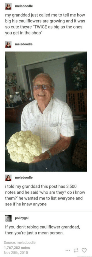 "Cute, Mean, and How: meladoodle  my granddad just called me to tell me how  big his cauliflowers are growing and it was  so cute theyre ""TWICE as big as the ones  you get in the shop""  meladoodle  meladoodle  i told my granddad this post has 3,500  notes and he said who are they? do i know  them? he wanted me to list everyone and  see if he knew anyone  policygal  If you don't reblog cauliflower granddad,  then you're just a mean person.  Source: meladoodle  1,767,282 notes  Nov 25th, 2015"