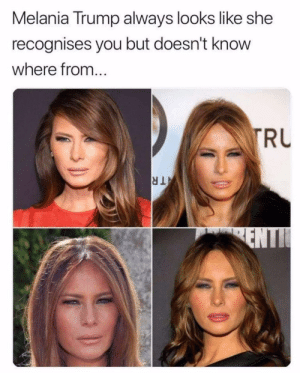 Hmm, Im sure I know you from somewhere! via /r/memes https://ift.tt/2E5SmRd: Melania Trump always looks like she  recognises you but doesn't know  where from..  RU Hmm, Im sure I know you from somewhere! via /r/memes https://ift.tt/2E5SmRd