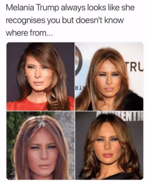 Melania Trump, True, and Trump: Melania Trump always looks like she  recognises you but doesn't know  where from...  RU True.