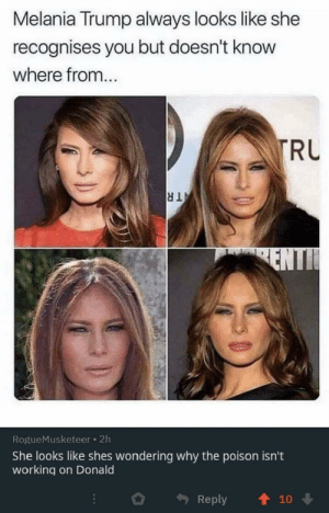 I salute you commenter by doodie-dude MORE MEMES: Melania Trump always looks like she  recognises you but doesn't know  where from...  TRU  TR  ENTI  RogueMusketeer 2h  She looks like shes wondering why the poison isn't  working on Donald  Reply  10 I salute you commenter by doodie-dude MORE MEMES