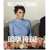 Born to Die, Funny, and Melania Trump: MELANIA TRUMP  BORN TO DIE this is rlly funny 2 me
