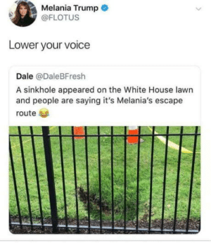 Ssssssh.: Melania Trump  @FLOTUS  Lower your voice  Dale @DaleBFresh  A sinkhole appeared on the White House lawn  and people are saying it's Melania's escape  route Ssssssh.
