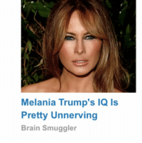 And by unnerving you mean obvious: Melania Trump's IQ Is  Pretty Unnerving  Brain Smuggler And by unnerving you mean obvious