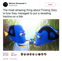 Hairline, Memes, and Finding Dory: Melanie Bracewell  Follow  @mel doodle  The most amazing thing about Finding Dory  is how they managed to put a receding  hairline on a fish  Retweets Likes  27,761  84,157  8:42 PM 13 Jun 2017 😂😂😂