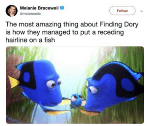 Hairline, Finding Dory, and Fish: Melanie Bracewell  Follow  @meladoodle  The most amazing thing about Finding Dory  is how they managed to put a receding  hairline on a fish Receding hairline
