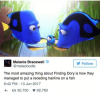 Hairline, Memes, and Grey's Anatomy: Melanie Bracewell  @meladoodle  Follow  The most amazing thing about Finding Dory is how they  managed to put a receding hairline on a fish  6:42 PM-13 Jun 2017  다 30,750 92,760 I need to take book pictures for @mxgicalbooks but I would rather watch grey's anatomy