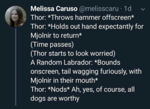 Awww, man's best friend: Melissa Caruso @melisscaru 1d  Thor: *Throws hammer offscreen*  Thor: *Holds out hand expectantly for  Mjolnir to return*  (Time passes)  (Thor starts to look worried)  A Random Labrador: *Bounds  onscreen, tail wagging furiously, with  Mjolnir in their mouth*  Thor: *Nods* Ah, yes, of course, all  dogs are worthy Awww, man's best friend
