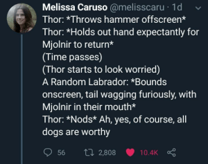 I have too many memes: Melissa Caruso @melisscaru 1d  Thor: *Throws hammer offscreen*  Thor: *Holds out hand expectantly for  Mjolnir to return*  (Time passes)  (Thor starts to look worried)  A Random Labrador: *Bounds  onscreen, tail wagging furiously, with  Mjolnir in their mouth*  Thor: *Nods* Ah, yes, of course, all  dogs are worthy  1i2,808  56  10.4K I have too many memes
