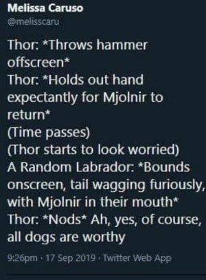 Dogs, Twitter, and Thor: Melissa Caruso  @melisscaru  Thor: *Throws hammer  offscreen*  Thor: *Holds out hand  expectantly for Mjolnir to  return*  (Time passes)  (Thor starts to look worried)  A Random Labrador: *Bounds  onscreen, tail wagging furiously,  with Mjolnir in their mouth*  Thor: *Nods* Ah, yes, of course,  all dogs are worthy  9:26pm 17 Sep 2019 Twitter Web App really wholesome thor petting them labrathors via /r/wholesomememes https://ift.tt/2QmjEtr