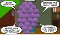 #memberberries #TaxationIsTheft: MEMBER  CHEWBACCA?  MEMBER WHEN  THERE WEREN'T SO  MANY MEXICANS?  MEMBER THE  BIONIC MAN?  YOU MEMBER  WHEN TAXATION  WAS THEFT? #memberberries #TaxationIsTheft