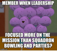 -Load Toad: MEMBER WHEN LEADERSHIP  FOCUSED MORE ON THE  MISSION THAN SQUADRON  BOWLING AND PARTIES?  imgflip.com -Load Toad