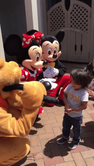 """adreamdeferred:  shannonallaround:  skunkandburningtires:  WARNING: FEELS!!!  Mickey and Minnie speak to deaf child using sign language.   I'm learning sign language so I understand this! They said """"Nice to meet you"""" and then Minnie said """"You know I love you"""" Ahhh I live for these kind of moments!   bitch i'm crying  : MEMBERS ONI adreamdeferred:  shannonallaround:  skunkandburningtires:  WARNING: FEELS!!!  Mickey and Minnie speak to deaf child using sign language.   I'm learning sign language so I understand this! They said """"Nice to meet you"""" and then Minnie said """"You know I love you"""" Ahhh I live for these kind of moments!   bitch i'm crying"""