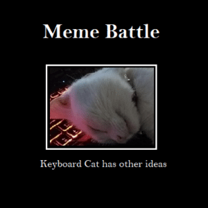 Meme, Soldiers, and Brave: Meme Battle  Keyboard Cat has other ideas Fight on brave soldiers