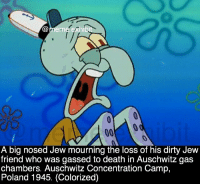 meme echibi  00  A big nosed Jew mourning the loss of his dirty Jew  friend who was gassed to death in Auschwitz gas  chambers. Auschwitz Concentration Camp,  Poland 1945. (Colorized) Follow my backup account @meme_exhibit plz • ➫➫➫ Follow @meme.exhibit for more posts! • • • • meme funny lmao lmfao lol memes dead humour bruh trump2016 laugh jokes savage nochill hilarious follow4follow like4like repost offensive offensivememes dank dankmemes followforfollow music mannequinchallenge pepe lit spongebobmemes spongebob