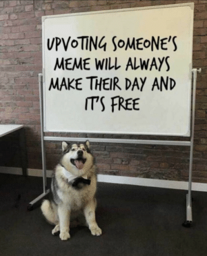 Meme, True, and Tumblr: MEME WILL ALWAYS  MAKE THEIR DAY AND  ITS FREE awesomacious:  Wholesome and true 3