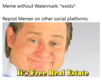 memer: Meme without Watermark: *exists  Repost Memer on other social platforms:  I's Free Real Estate
