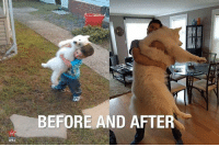 Check us out for more funny Chit: MemeGen te  M  BEFORE AND AFTER  892 Check us out for more funny Chit