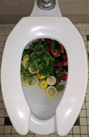 Tumblr, Blog, and Http: memehumor:  Catering employee dumps out the fruit infused water from a catered lunch so he can retrieve the containers. Now we have one less toilet.