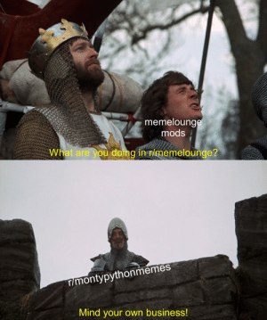 Hmm: memelounge  mods  What are you doing in r/memelounge?  r/montypythonmemes  Mind your own business! Hmm