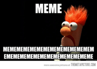 MEMEMEMEMEMEMEMEMEMEMEMEMEM  EMEMEMEMEMEMEMEMEMEMEMEMEME  more awesome pictures at THEMETAPICTURE.COM