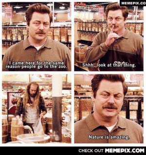 Easily the best Ron Swanson momentomg-humor.tumblr.com: MEMEPIX.CO  TRAIL MIX  I came here for the same  reason people go to the zoo.  Shhh, look at that thing.  Cit  Nature is amazing.  CНЕCK OUT MЕМЕРІХ.COM Easily the best Ron Swanson momentomg-humor.tumblr.com