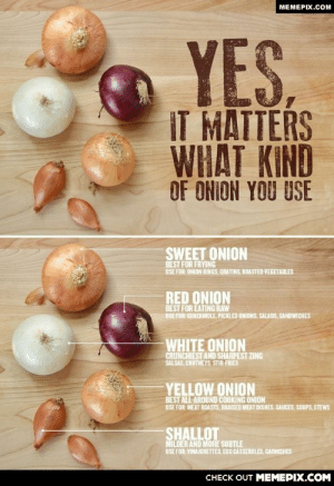 Taste the differenceomg-humor.tumblr.com: MEMEPIX.COM  YES.  IT MATTERS  WHAT KIND  OF ONION YOU USE  SWEET ONION  BEST FOR FRYING  USE FOR: ONION RINGS, GRATINS, ROASTED VEGETABLES  RED ONION  BEST FOR EATING RAW  USE FOR: GUACAMOLE, PICKLED ONIONS, SALADS, SANDWICHES  WHITE ONION  CRUNCHIEST AND SHARPEST ZING  SALSAS, CHUTNEYS, STIR-FRIES  BEST ALL-AROUND COOKING ONION  USE FOR: MEAT ROASTS, BRAISED MEAT DISHES, SAUCES, SOUPS, STEWS  SHALLOT  MILDER AND MORE SUBTLE  USE FOR: VINAIGRETTES, EGG CASSEROLES, GARNISHES  CHECK OUT MEMEPIX.COM Taste the differenceomg-humor.tumblr.com