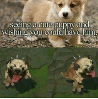 Best skin in the world: @memer,with sty e  Seeing a cute puppy and  wishing you could have him Best skin in the world