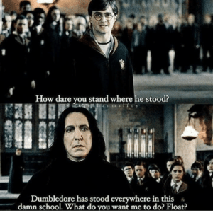 Memes for the Harry Potter heads! #Memes #HarryPotter #Books #Movie: Memes for the Harry Potter heads! #Memes #HarryPotter #Books #Movie