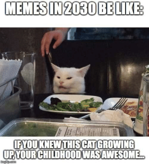 Future meme: MEMES IN 2030 BE LIKE  IFYOUKNEWTHISCATGROWING  UPYOUR CHILDHOODWASAWESOME...  ingilip.com Future meme