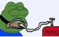 Roses are red, Pepe is Green, He will Always be My Dankest Meme: Memes Roses are red, Pepe is Green, He will Always be My Dankest Meme