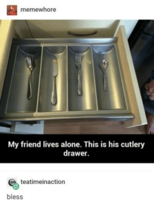 drawer: memewhore  My friend lives alone. This is his cutlery  drawer.  teatimeinaction  bless