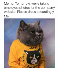 24 Funny Animal Pictures To Distract You From Whatever You're Supposed To Be Doing: Memo: Tomorrow, we're taking  employee photos for the company  website. Please dress accordingly.  Me:  @StupidResumes  HATE 24 Funny Animal Pictures To Distract You From Whatever You're Supposed To Be Doing