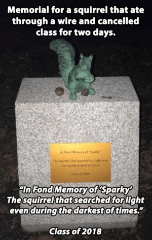 "Sparky the Squirrel - In memorial: Memorial for a squirrel that ate  through a wire and cancelled  class for two days.  In Fond Memory of Sparky""  The squirrel that searched for light even  during the darkest of times  Clas of 2018  ""In Fond Memoryof Sparky  The squirrel that searched for light  even during the darkest of times.""  Class of 2018 Sparky the Squirrel - In memorial"