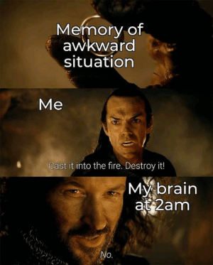 Meirl: Memory of  awkward  situation  Me  Cast it into the fire. Destroy it!  My brain  at 2am  No. Meirl