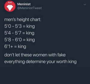 Fake, Women, and King: Meninist  @MeninistTweet  men's height chart:  5'0-5'3 king  5'4- 57 king  5'8-6'0 king  6'1+ = king  don't let these women with fake  everything determine your worth king Just a reminder that we're all kings :)