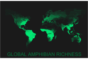 mens-rights-activia:  datarep:  Global amphibian richness plotted using density ridges across latitude.   Look at all those wealthy frogs in South America and Africa, hoarding so much wealth. Slimy bastards  : mens-rights-activia:  datarep:  Global amphibian richness plotted using density ridges across latitude.   Look at all those wealthy frogs in South America and Africa, hoarding so much wealth. Slimy bastards