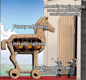 Confused, Memes, and Politics: Mentallyfragileyoung  fragile  a politicallVN  menandp  confused people  Funnwedginess  Literally nazism  lotally apolltical  Webstars the trojan nazi memes