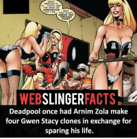 Facts, Life, and Memes: MENTION IT,  THE SORT OF  GREGARMOKUS  GUY I AM THAT RIGHT  6WENS ONE  THROUGH  FOURP  WEB  SLINGER  FACTS  Deadpool once had Arnim Zola make  four Gwen Stacy clones in exchange for  sparing his life. ▲▲ - Gwen Stacy Clones! - My other IG accounts @factsofflash @yourpoketrivia @facts_of_heroes ⠀⠀⠀⠀⠀⠀⠀⠀⠀⠀⠀⠀⠀⠀⠀⠀⠀⠀⠀⠀⠀⠀⠀⠀⠀⠀⠀⠀⠀⠀⠀⠀⠀⠀⠀⠀ ⠀⠀----------------------- spiderman peterparker tomholland marvelfacts spidermanfacts webslingerfacts venom carnage avengers xmen justiceleague marvel homecoming tobeymaguire andrewgarfield ironman spiderman2099 civilwar auntmay like gwenstacy maryjane deadpool miguelohara hobgoblin milesmorales like4like