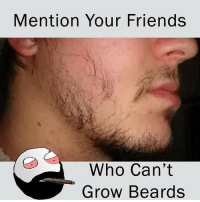 Be Like, Friends, and Meme: Mention Your Friends  Who Can't  Grow Beards Twitter: BLB247 Snapchat : BELIKEBRO.COM belikebro sarcasm meme Follow @be.like.bro