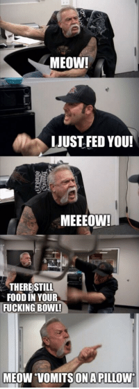 Food, Fucking, and Memes: MEOW!  LIUST FED YOU!  MEEEOW  THERE STILL  FOOD IN YOUR  FUCKING BOWL!  MEOW VOMITSON APILLOWW Pretty much every cat ever via /r/memes https://ift.tt/2A9Oo5K