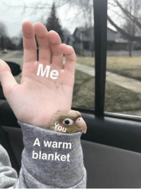 You, Mer, and Warm: Mer  You  A warm  blanket