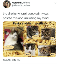 hotellesbian:mama pasta looks so kind: Meredith Jeffers  @MeredithJeffers  the shelter where i adopted my cat  posted this and i'm losing my mind  Pasta and/her noodles  Lasagna  Ziti  Mama Pasta  Ravioli  Penne  10/3/18, 2:47 PM hotellesbian:mama pasta looks so kind