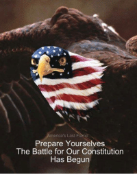 Prepare Yourselves: merica's Last Flame  Prepare Yourselves  The Battle for Our Constitution  Has Begun