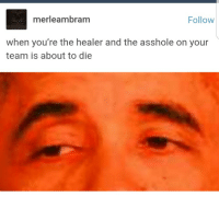 Respect, Tumblr, and Blog: merleambram  Follow  When you're the healer and the asshole on your  team is about to die awesomacious:  Respect your Healers