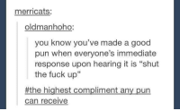 "good puns: merricats:  oldman hoho:  you know you've made a good  pun when everyone's immediate  response upon hearing it is ""shut  the fuck up""  the highest compliment an  pun  Can receive"