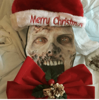 It's a zombie Christmas for @pdawg4jc! Thanks for getting into the holiday spirit with our TWD mask. 😊🎄 FanFriday thewalkingdead holidays christmas lootcrate looterlove: Merry Ch It's a zombie Christmas for @pdawg4jc! Thanks for getting into the holiday spirit with our TWD mask. 😊🎄 FanFriday thewalkingdead holidays christmas lootcrate looterlove
