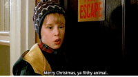 Home Alone: Merry Christmas, ya filthy animal. Home Alone